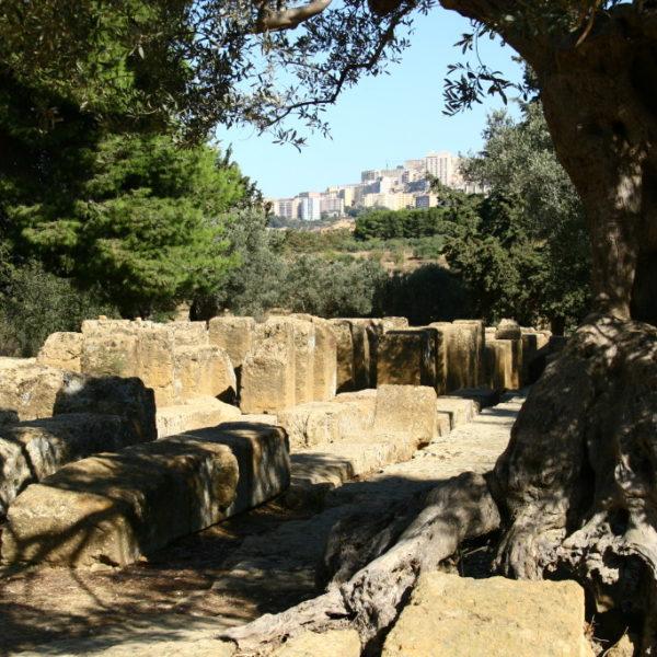 Valle dei Templi mit Blick auf das moderne Agrigent