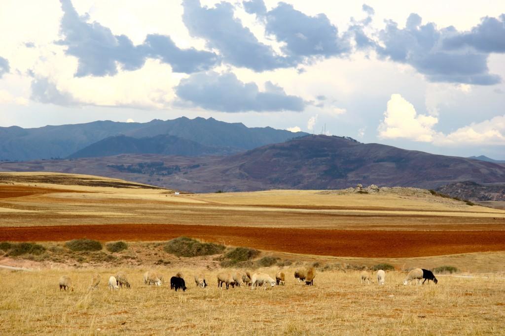 Pachamama - Rote Erde bei Maras