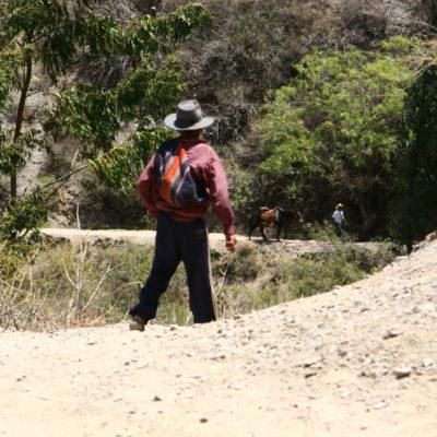 Peruaner mit Esel im Valle del Colca