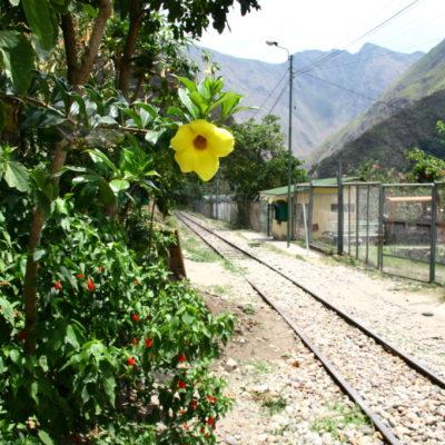Bahngleise im Urumbatal
