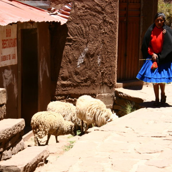La Isla Taquile - Mädchen in traditioneller Kleidung hütet Schafe
