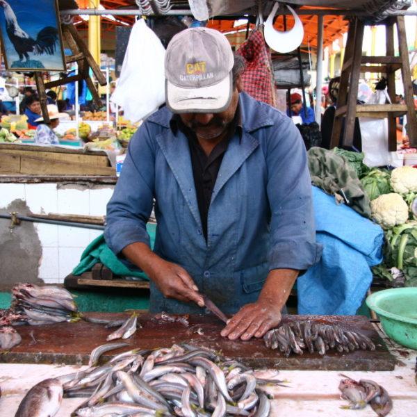 Mercado San Camilo - Fischverkäufer beim Ausnehmen von Fischen auf dem Markt in Arequipa