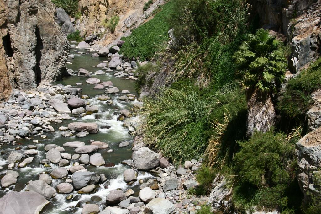 Rio Colca - Der Colca-Fluss in der Colca-Schlucht