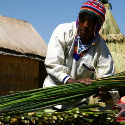 Uros-Indianer führt vor, Uros-Indianer führt vor, wie Häuser und Boot aus Totora-Schilf gebaut werdendie Häuser aus