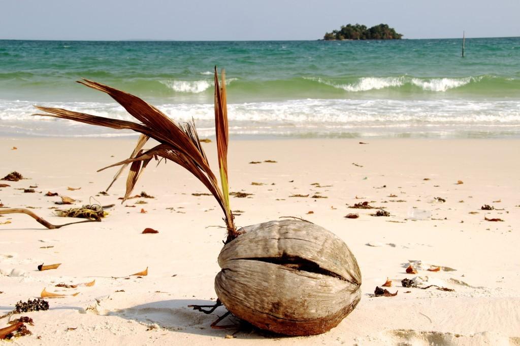 Long Beach - Kokosnuss und die Insel Kaoh Kaoh Touch