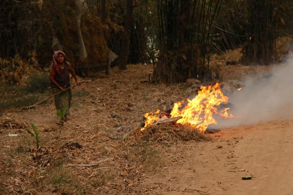 Feuer am Wegesrand