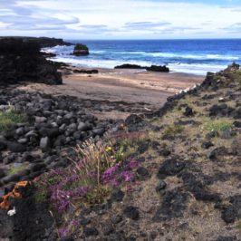 Island – Versteinerte Trolle im Polarmeer