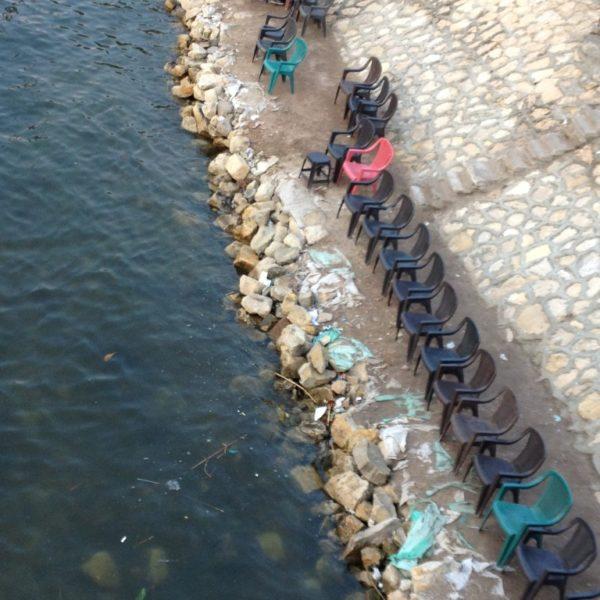 Am Nil in der ersten Reihe