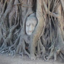 Ayutthaya – Alte Königsstadt von Siam