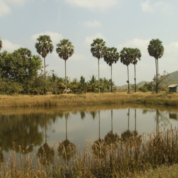 Countryside Tour around Kampot