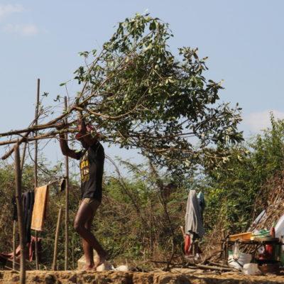Ein Mann Trägt große Äste für den Hausbau