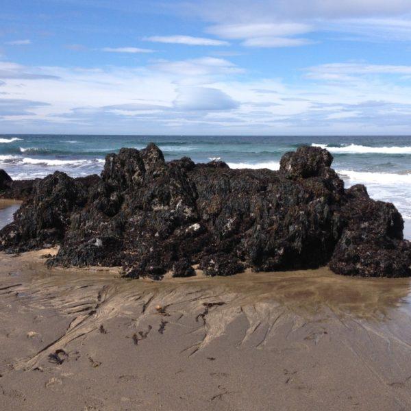 Felsen im Polarmeer auf dem Strand Skarðsvik