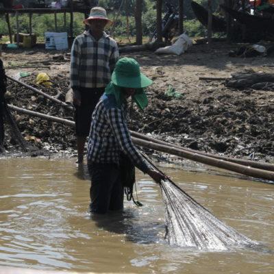 Fischer im Mekong ziehen volles Net aus dem Wasser