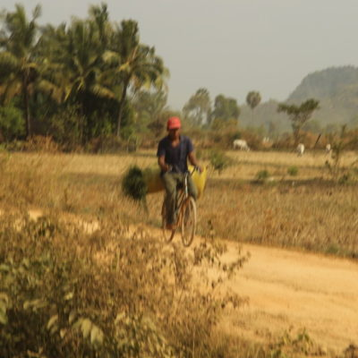 Heutransport auf dem Fahrrad