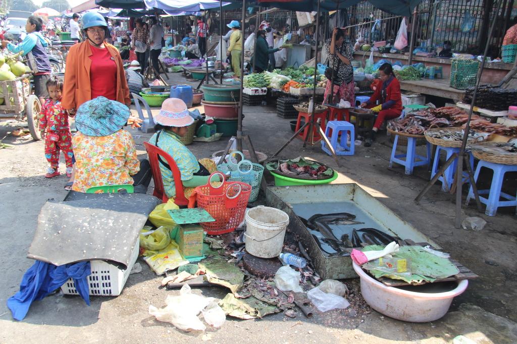 Phsar Nath - Fischverkauf auf dem zentralen Markt von Battambang