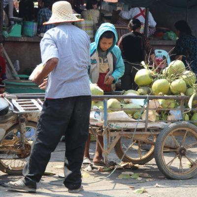 Phsar Nath - Frische Kokosnüsse auf dem zentralen Markt von Battambang