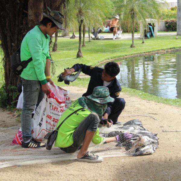 Suan Buak Hat: Während an den Ständen im Park Taubenfutter verkauft wird, welches die Besucher mit Freude an die Vögel verfüttern, werfen Taubenfänger riesige Netze aus und stopfen die Täubchen in große Säcke.