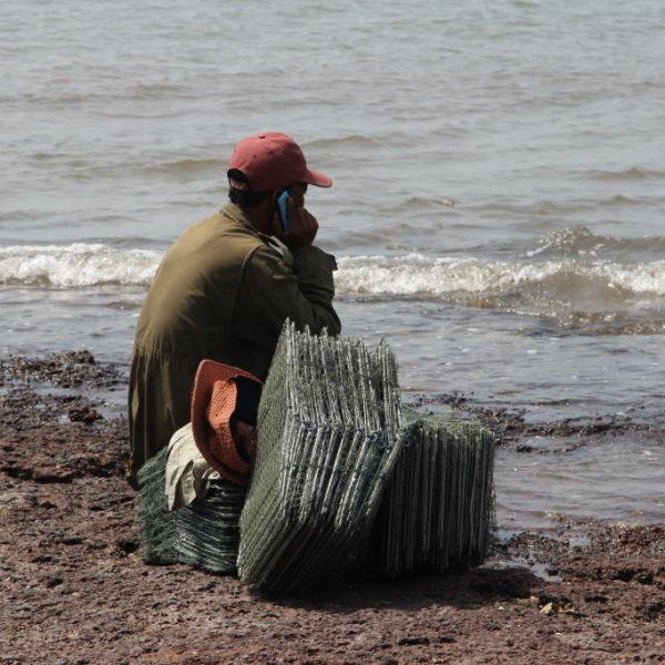 Warten auf den Krabbenfang