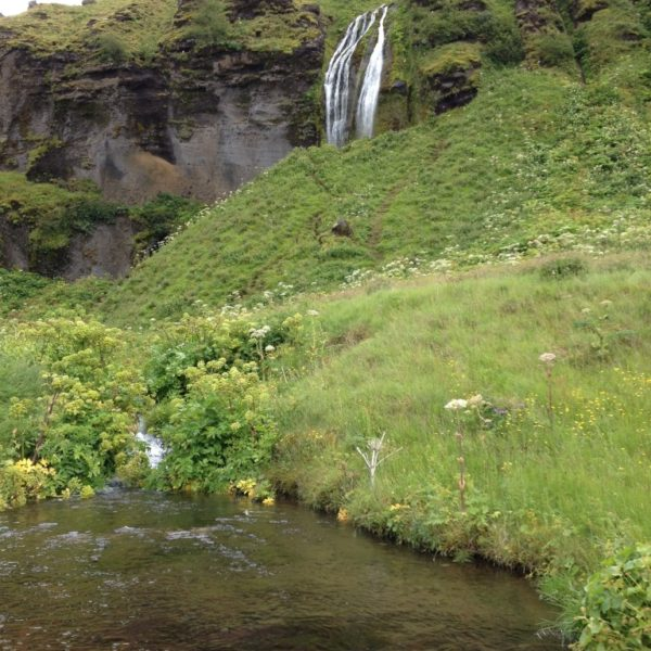Der Fluss Seljalandsá stürzt 66 m in die Tiefe und bildet den Wasserfall Seljalandsfoss