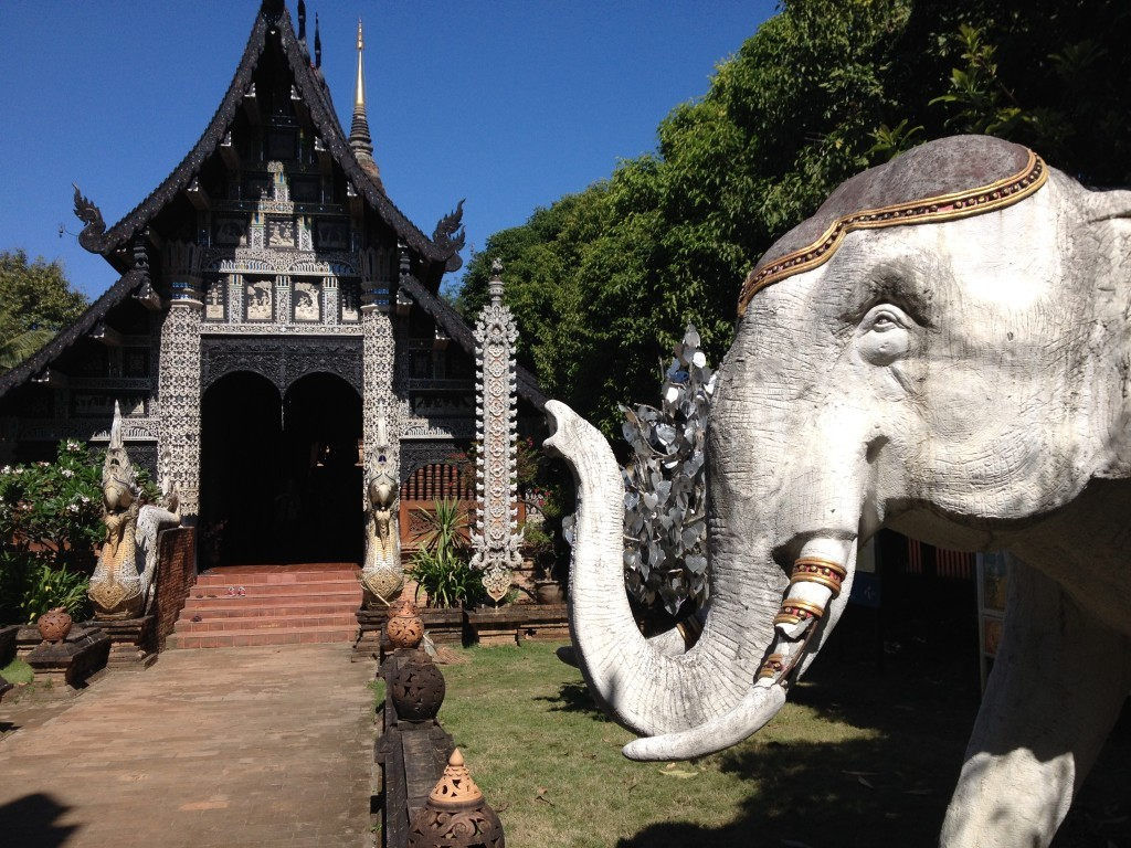 Wat Lok Mo Li - Elefant am Engang
