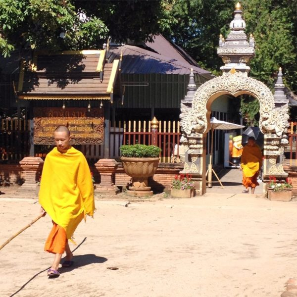 Wat Lok Mo Li - Junge Mönche