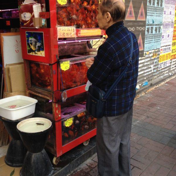 """Goldfisch-Markt -  Die Tung Choi Street ist gesäumt von kleinen Läden, in denen farbenfrohe Fische in überfüllten Aquarien schwimmen oder in wassergefüllten Plastiktüten """"to go"""" an die Wände gepinnt sind. Goldfische sollen auch nach der Vorstellung von Feng Shui Glück bringen."""