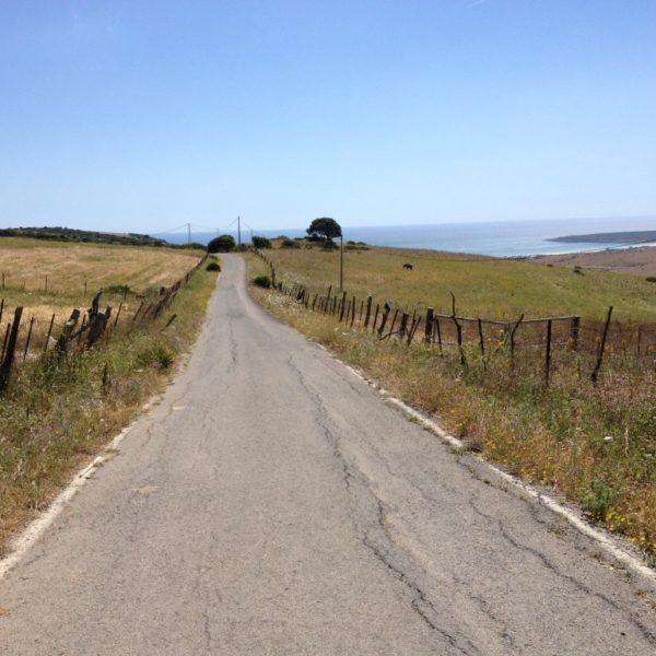 Landstraße in Andalusien