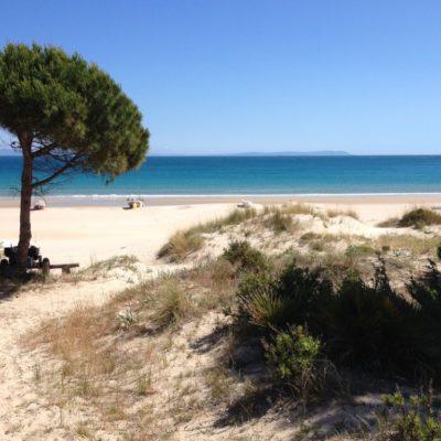 Playa de Bolonia an der Costa de la Luz
