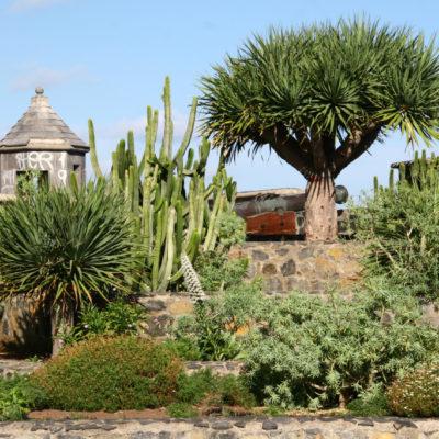 Castillo San Felipe in Puerto de la Cruz