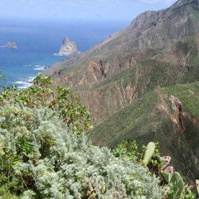 Küste am Anaga-Gebirge
