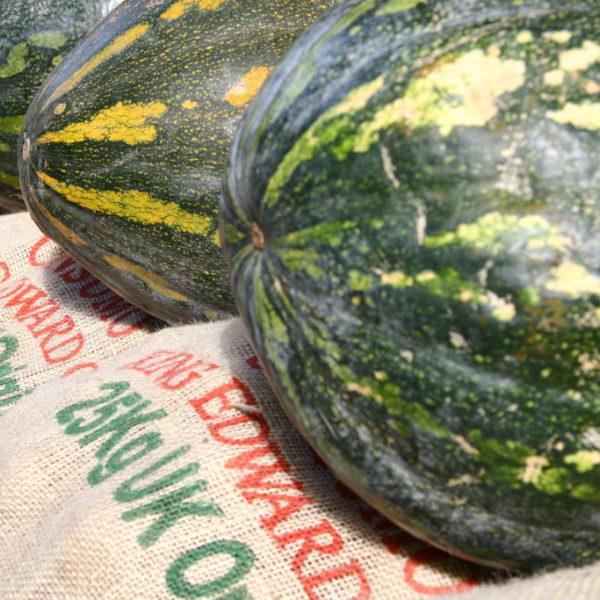 Wassermelonen in Santa Cruz de Tenerife