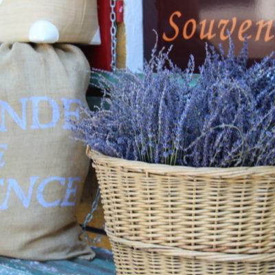 Lavendelverkauf in der Provence