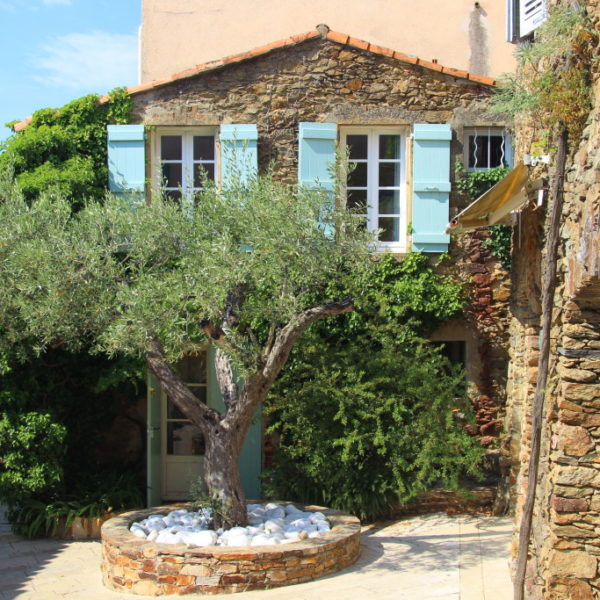 Olivenbaum-Rondell in Gassin